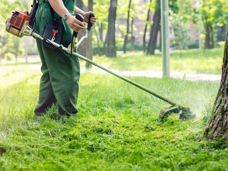 How to Estimate a Landscaping Jobs